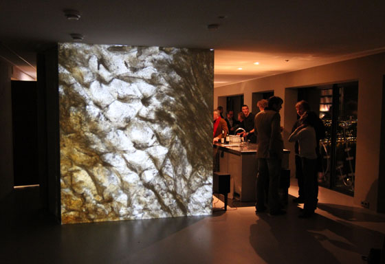 opening Wallgallery 14 Jan 2011_fish skin